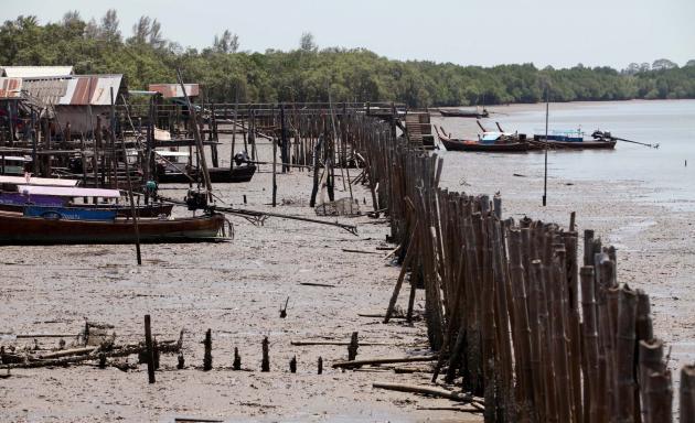 erosion control beach