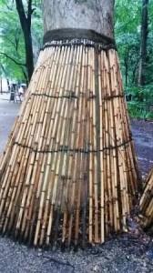 bamboo skirt