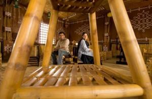 social enterprise, bamboo